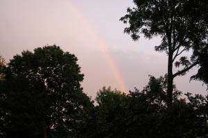 rainbow 5-2015